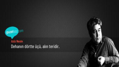 Photo of Aziz Nesin Sözleri