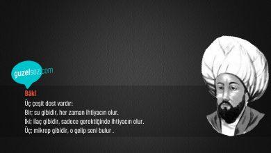 Photo of Bâkî Sözleri