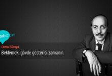 Photo of Cemal Süreya Sözleri