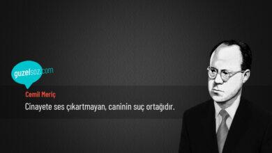 Photo of Cemil Meriç Sözleri
