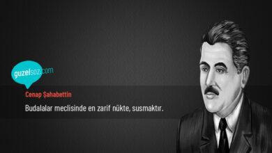 Photo of Cenap Şahabettin Sözleri