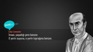 Photo of Edip Cansever Sözleri