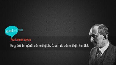 Photo of Fazıl Ahmet Aykaç Sözleri