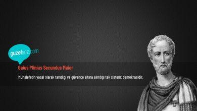Photo of Gaius Plinius Secundus Maior Sözleri
