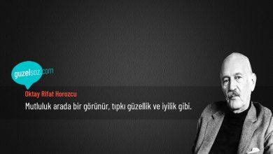 Photo of Oktay Rifat Horozcu Sözleri