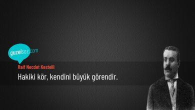 Photo of Raif Necdet Kestelli Sözleri