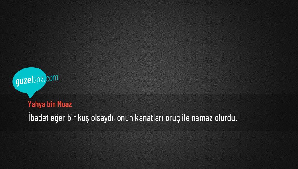 Yahya bin Muaz Sözleri
